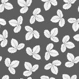 Teste padrão preto e branco Foto de Stock Royalty Free