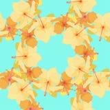 Teste padrão sem emenda com hibiscus bonito Ilustração do vetor Imagens de Stock Royalty Free