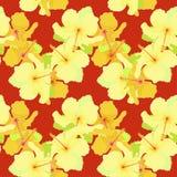 Teste padrão sem emenda com hibiscus em uma obscuridade - fundo vermelho Vetor Imagem de Stock Royalty Free