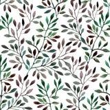 Teste padrão sem emenda da aquarela com ramos de árvore Imagens de Stock Royalty Free