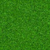 Teste padrão sem emenda 1 da grama verde Foto de Stock Royalty Free
