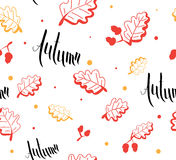 Teste padrão sem emenda do outono e de cartão escrito à mão das folhas Imagens de Stock