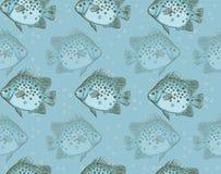 Teste padrão sem emenda dos peixes Imagens de Stock