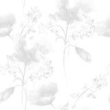 Teste padrão sem emenda monocromático com flores Foto de Stock Royalty Free