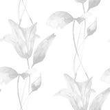 Teste padrão sem emenda monocromático com flores do lírio Fotos de Stock Royalty Free