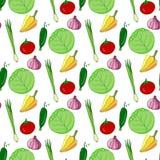 Teste padrão sem emenda tirado mão com vegetais coloridos Ilustração do vetor Vegetal para o fundo estilizado da salada Imagens de Stock Royalty Free