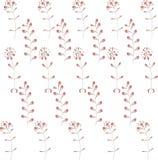 Teste padrão vegetal sem emenda O sumário vermelho do inclinação floresce e as folhas nos contornos brancos, pretos Foto de Stock Royalty Free