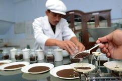 Teste tea Royalty Free Stock Photos