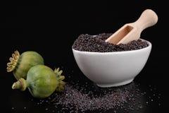 Teste verdi del papavero sui semi scuri Papavero nella cucina per i piatti saporiti immagine stock libera da diritti
