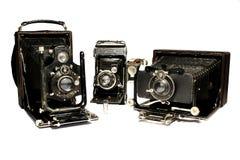 Testemunhas de uma História Fotografia de Stock Royalty Free