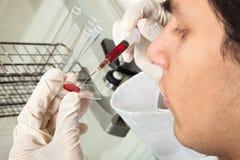 Testend bloed royalty-vrije stock afbeelding