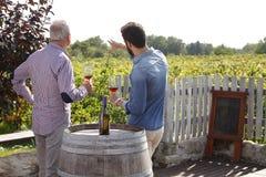 Testende Wijn stock foto