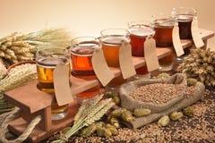 Testes da cerveja imagens de stock royalty free