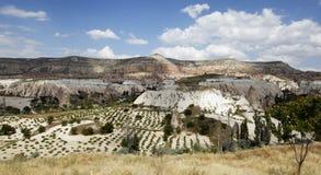 Testes padrões agriculturais Goreme Cappadocia Turquia Fotos de Stock Royalty Free