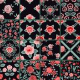 Testes padrões ajustados Foto de Stock
