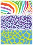Testes padrões coloridos da pele animal e da pele. Imagem de Stock Royalty Free