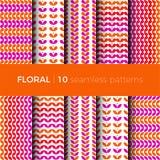 Testes padrões coloridos florais Imagem de Stock