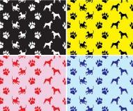 testes padrões com cães e cópias dos pés Fotografia de Stock Royalty Free