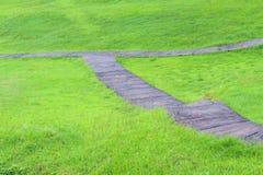 Testes padrões concretos da passagem e grama verde no fundo imagens de stock royalty free