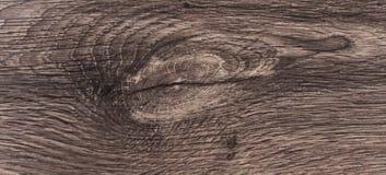Testes padrões, cores e testes padrões de madeira naturais Fotos de Stock Royalty Free