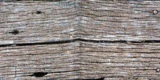 Testes padrões, cores e testes padrões de madeira naturais Fotos de Stock