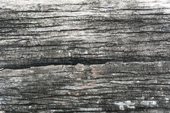 Testes padrões, cores e testes padrões de madeira naturais Foto de Stock Royalty Free
