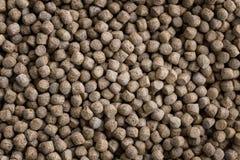 Testes padrões da alimentação animal do close-up, Imagens de Stock Royalty Free