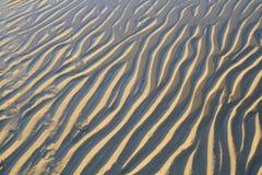 Testes padrões da areia na praia imagem de stock