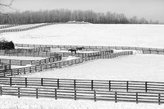 Testes padrões da cerca - preto e branco Fotos de Stock