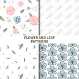 Testes padrões da flor e da folha Imagem de Stock