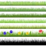 Testes padrões da grama Ilustração do Vetor