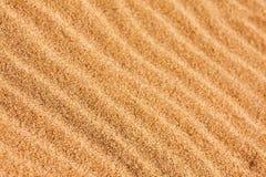 Testes padrões da ondinha na areia Imagens de Stock