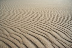 Testes padrões da praia Foto de Stock Royalty Free