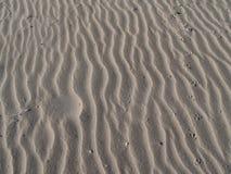 Testes padrões da praia, fundo. foto de stock royalty free