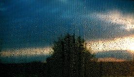 Testes padrões da tempestade Imagens de Stock Royalty Free