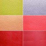 Testes padrões de couro coloridos Fotografia de Stock