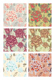 Testes padrões de flores Imagem de Stock Royalty Free