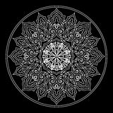 Testes padrões de flores do vetor Imagens de Stock