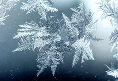 Testes padrões de Frost Fotografia de Stock Royalty Free