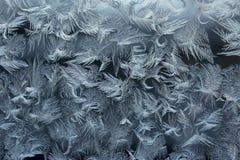 Testes padrões de Frost em uma placa de janela Fotografia de Stock