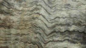 Testes padrões de madeira da grão do fundo Foto de Stock