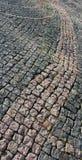 Testes padrões de pedra Fotografia de Stock