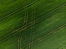 Testes padrões do trator em campos de cultivo do zangão Foto de Stock