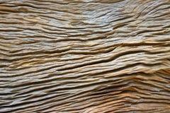 Testes padrões e texturas da madeira foto de stock