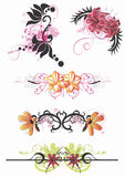 Testes padrões florais Fotos de Stock