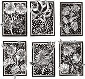 Testes padrões florais do retângulo Fotografia de Stock