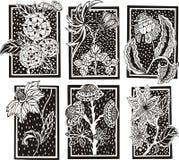 Testes padrões florais do retângulo Fotos de Stock