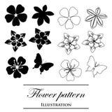 Testes padrões florais em um fundo branco Foto de Stock Royalty Free