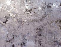 Testes padrões gelados no vidro do inverno Testes padrões fabulosos Imagem de Stock Royalty Free