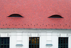 Testes padrões interessantes do telhado em Hungria Imagens de Stock Royalty Free